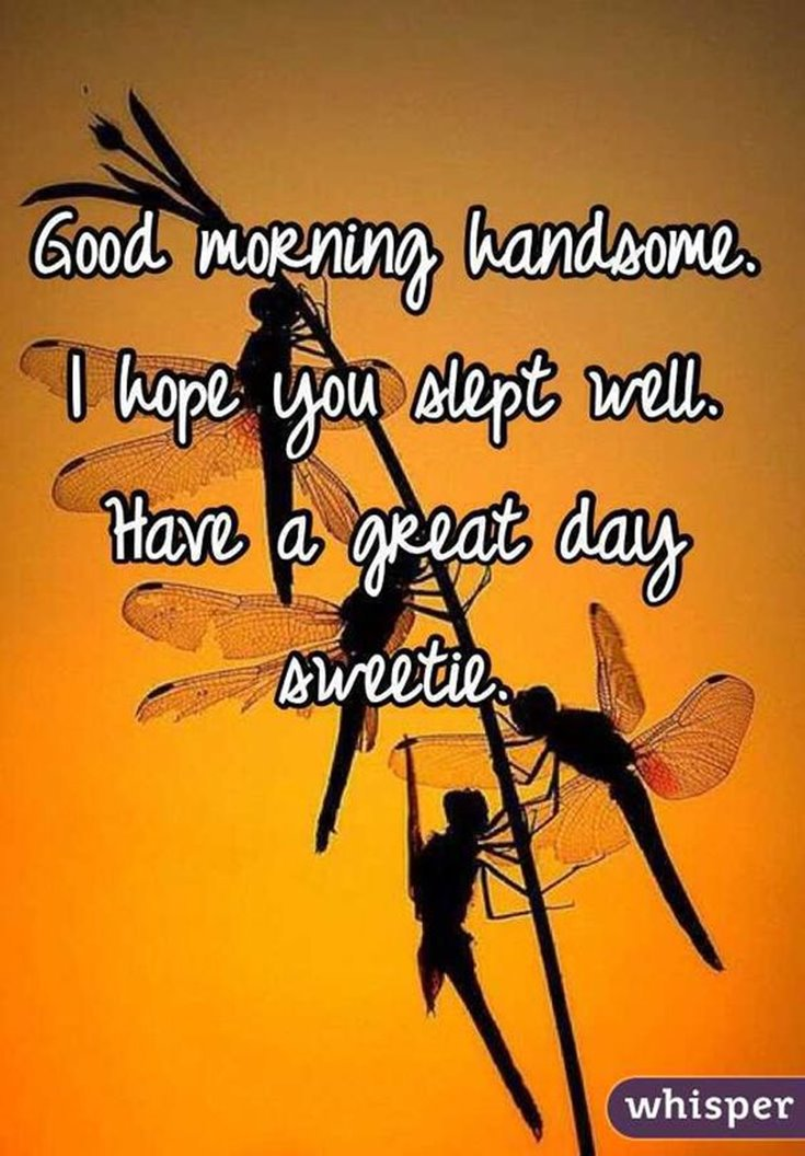 Collection 56 Good Morning Quotes And Wishes With Beautiful Images