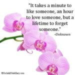 Orchids Quotes 2 and Sayings with Images